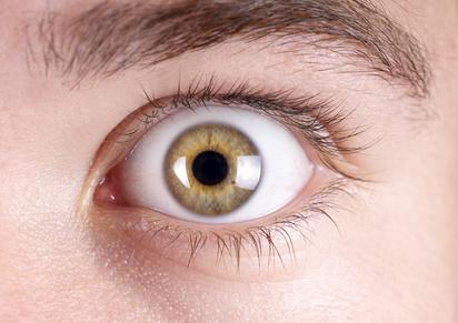 Brüo-Alltag: So entspannen Sie Ihre Augen