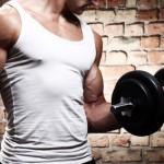 Muskel Training